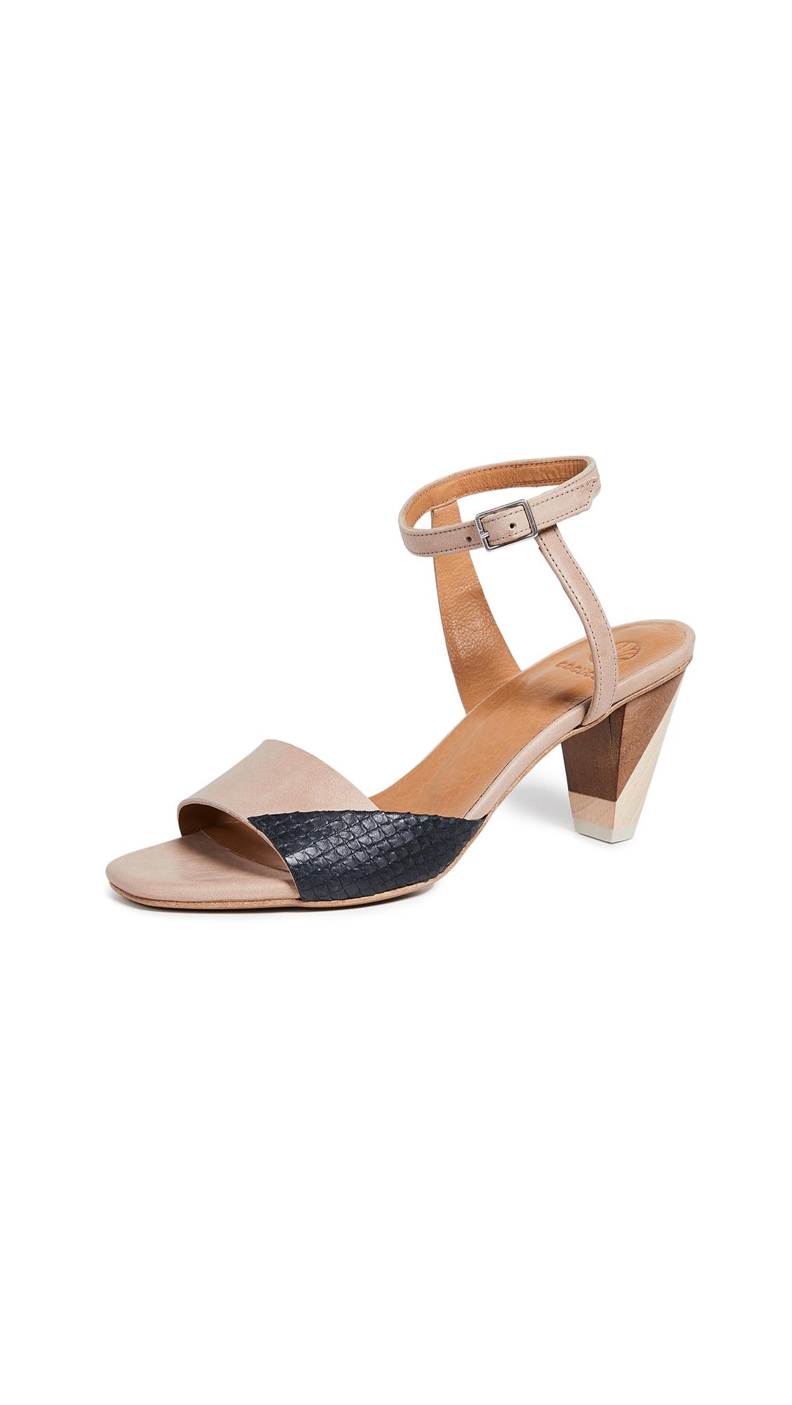 Coclico Shoes Ashford Strappy Sandals - Talco Bone/Scale Black
