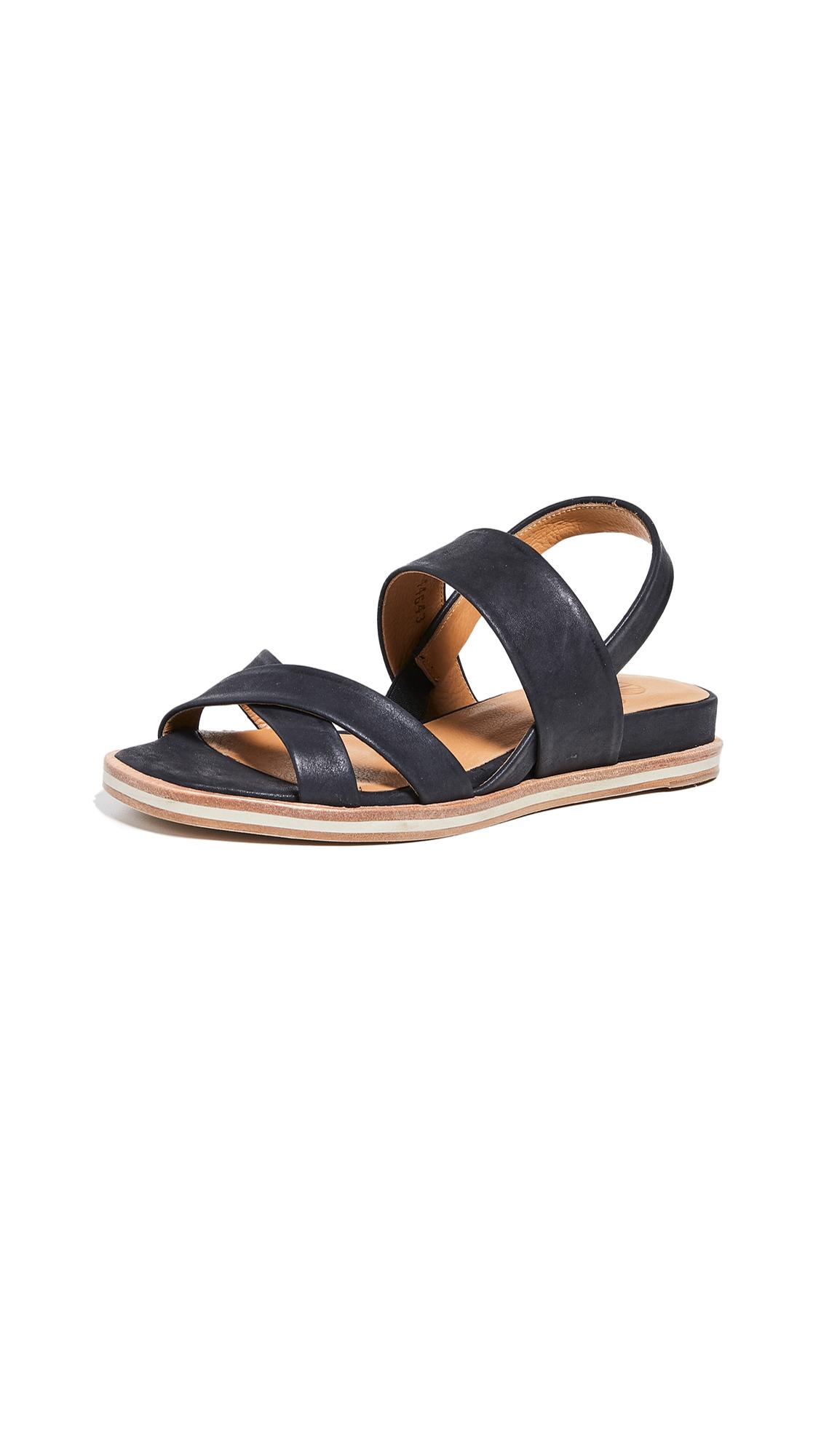 Coclico Shoes Katrin Strappy Sandals - Talco Black