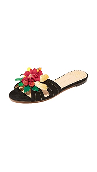 Charlotte Olympia Tropical Slides - Black