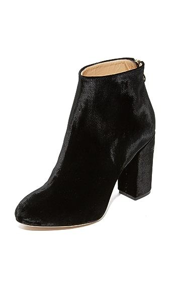 Charlotte Olympia Alba Booties In Black