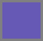 Regency Purple/Periwinkle