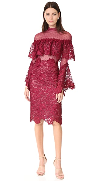 Costarellos Sheer Yoke Guipure Lace Dress