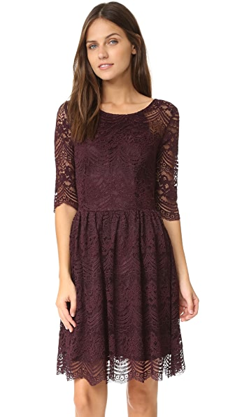 cupcakes and cashmere Geneva Lace Fit and Flare Dress
