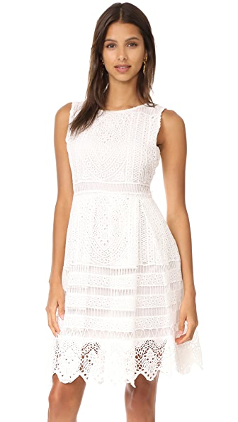 cupcakes and cashmere Summers Lace Fit And Flare Dress In Ivory