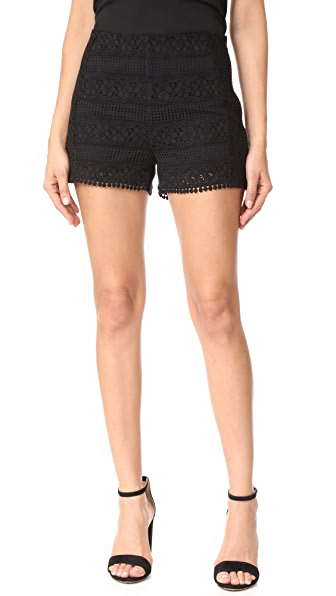 cupcakes and cashmere Christine Lace Shorts - Black