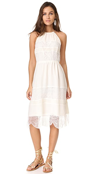 cupcakes and cashmere Tamika Pleated Trim Midi Dress In Ivory