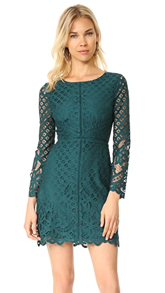 cupcakes and cashmere Spence Fitted Lace Dress - Forest Green