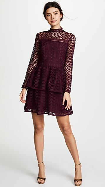 cupcakes and cashmere Symona Lace Dress