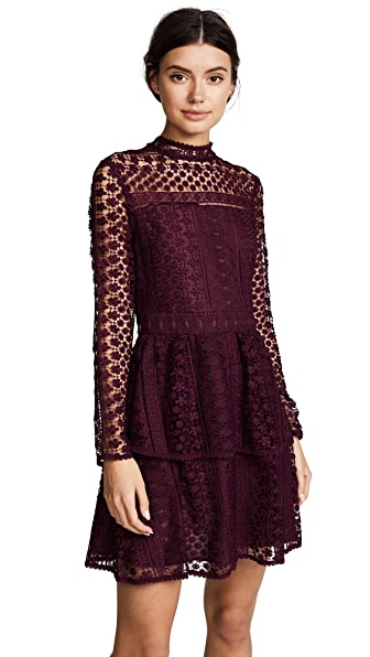 cupcakes and cashmere Symona Lace Dress In Malbec