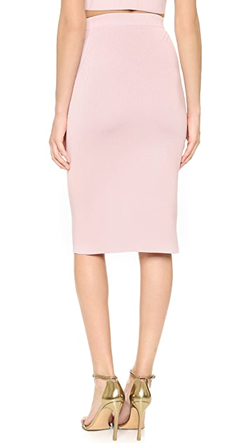 Cushnie Et Ochs High Waisted Pencil Skirt