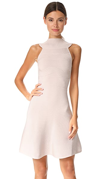 Cushnie Et Ochs Sleeveless Dress with Collar - Mushroom
