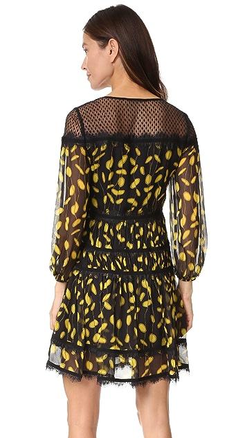 Diane von Furstenberg Jamie Dress