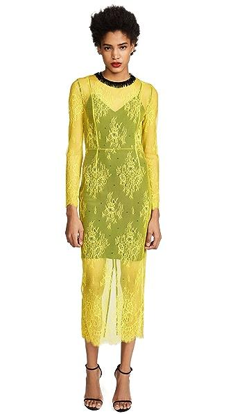 Diane von Furstenberg Crew Neck Lace Dress