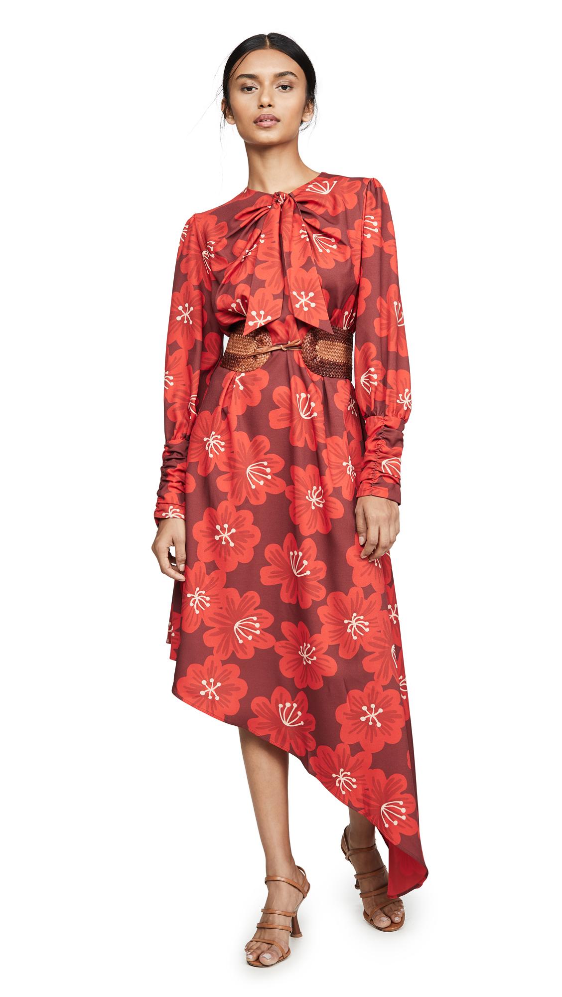 Buy DODO BAR OR online - photo of DODO BAR OR Melody Dress