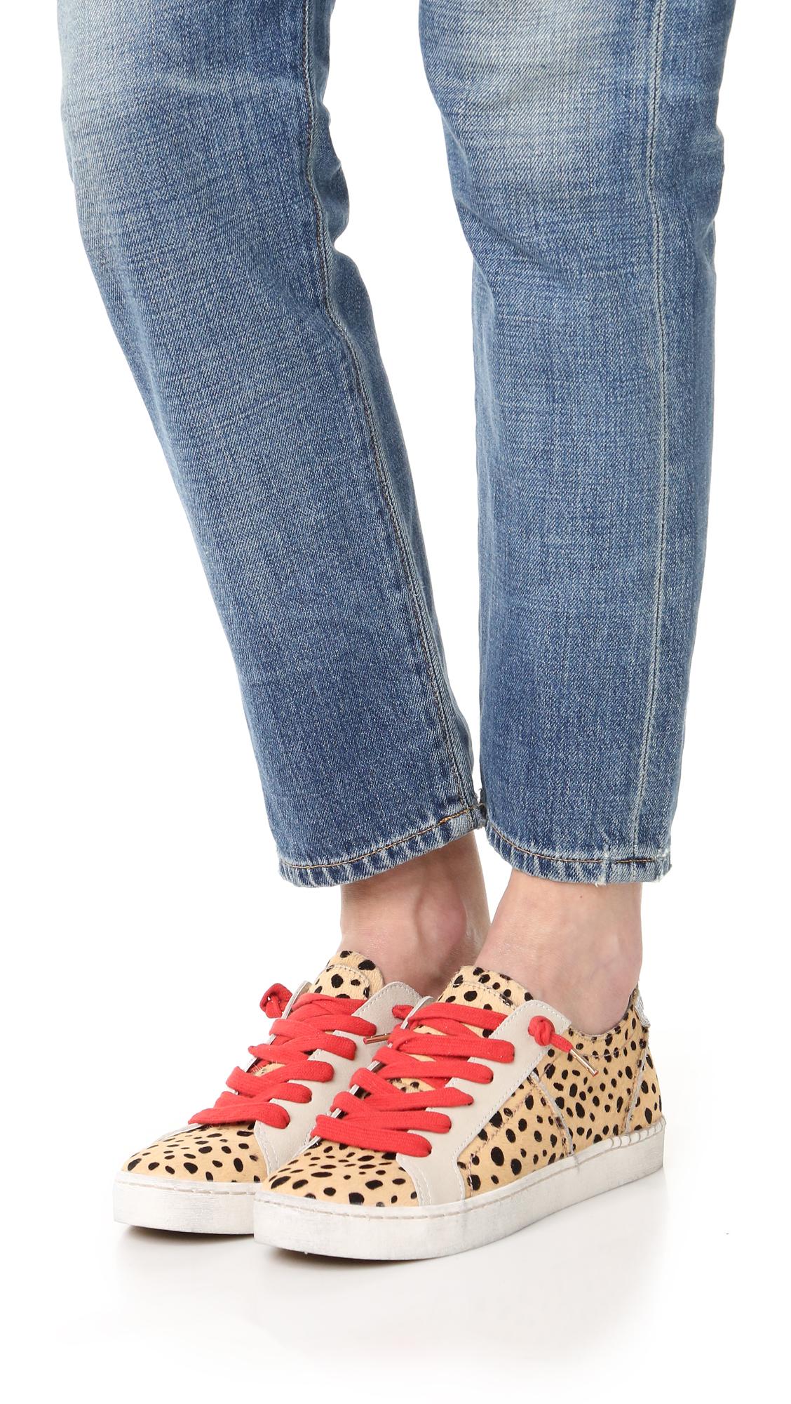 6b3f5bef0db0 Dolce Vita Zalen Haircalf Sneakers | SHOPBOP