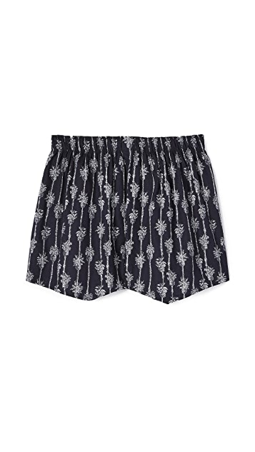 Druthers Palm Stripe Boxers