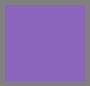Prankish Purple