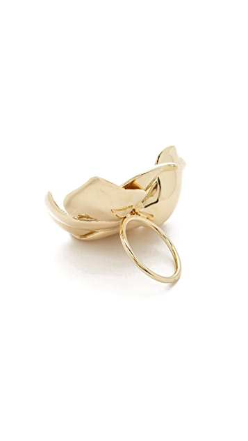Elizabeth and James Possy Ring
