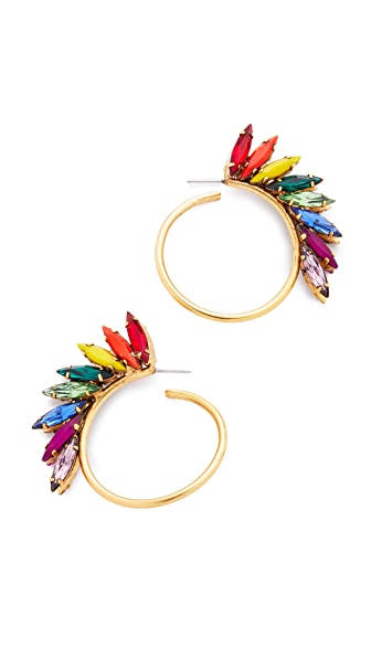 Elizabeth Cole Jordi Hoop Earrings