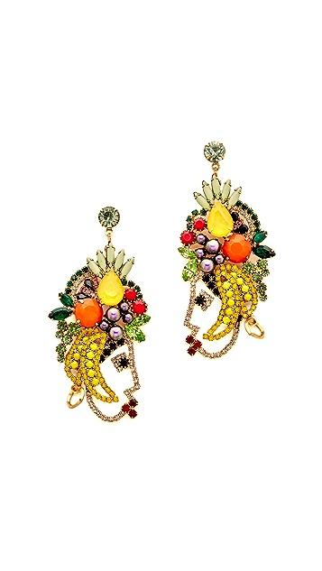 Elizabeth Cole Marina Earrings