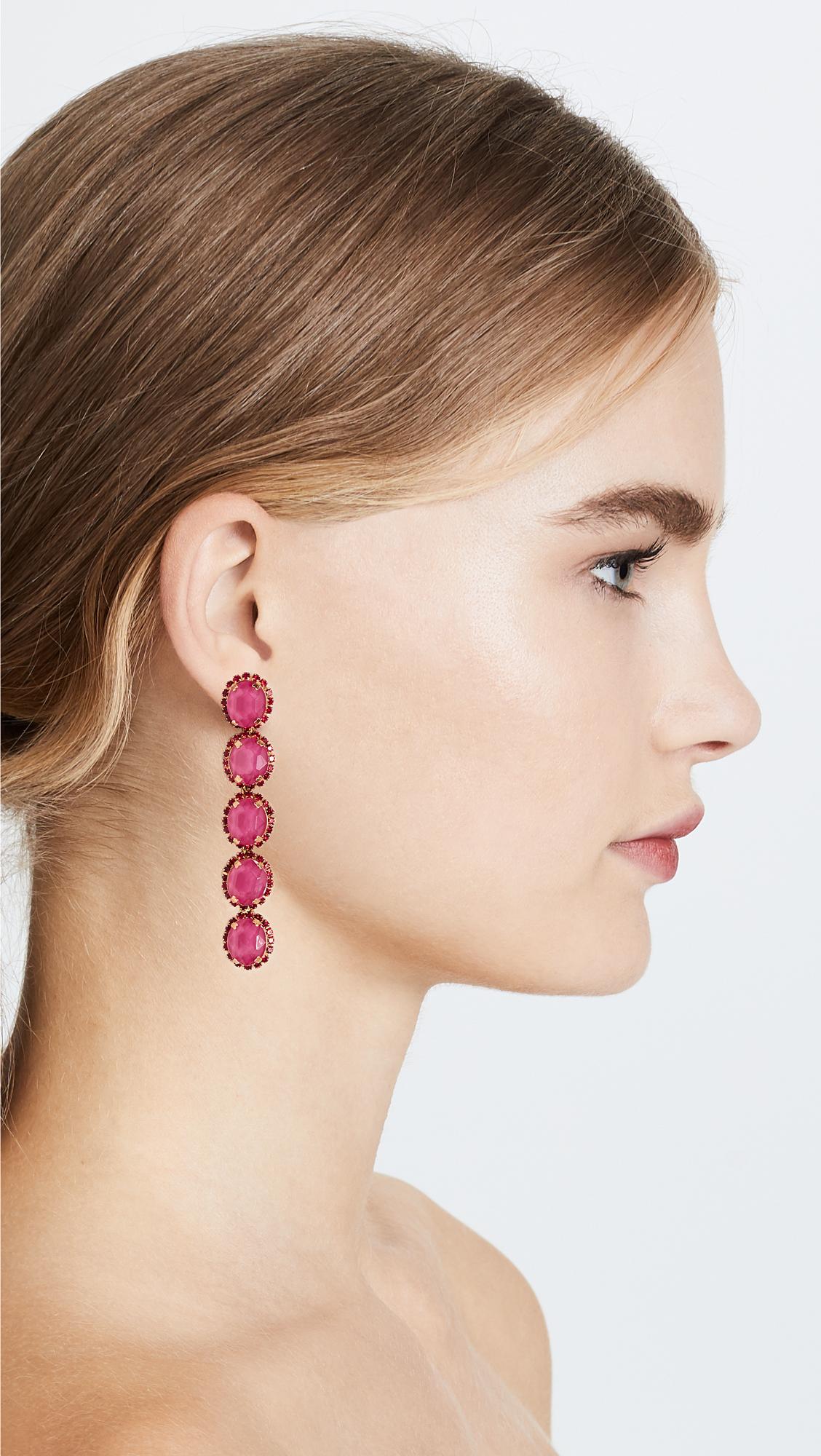 Elizabeth Cole Lawrence Earrings iUKX1