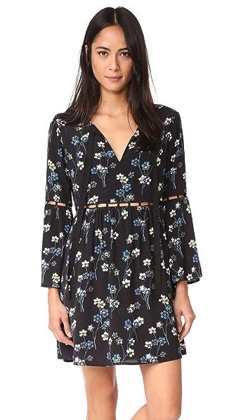 Ella Moss Adara Floral Dress In Black