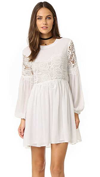 endless rose Woven Lace Combo Dress