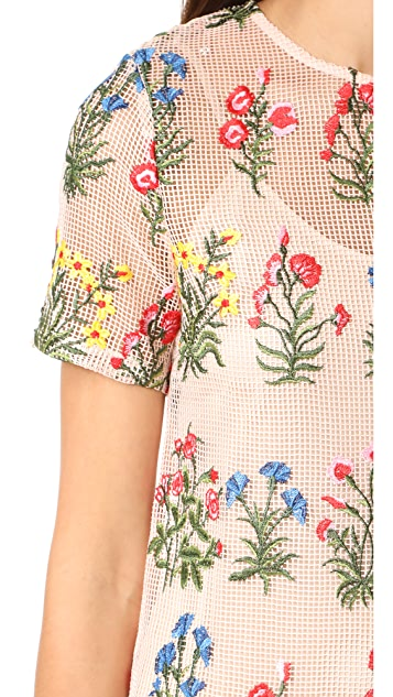 endless rose Embroidered Dress