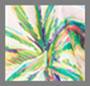Cashew/Tucano Rainbow