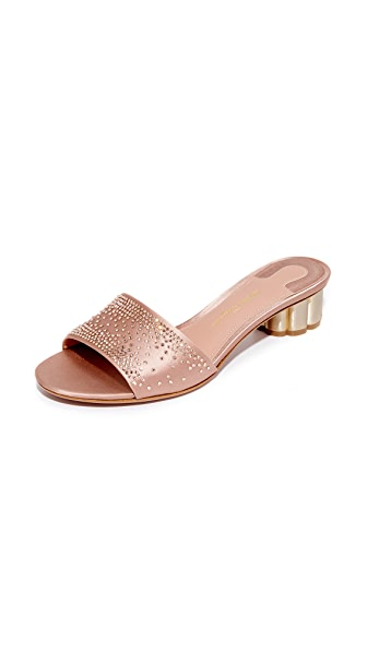 Salvatore Ferragamo Gorizias City Mules - New Blush