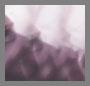 Violet Havana/Grey