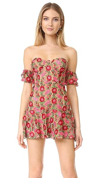 For Love & Lemons Amelia Strapless Mini Dress | 15% off first app ...