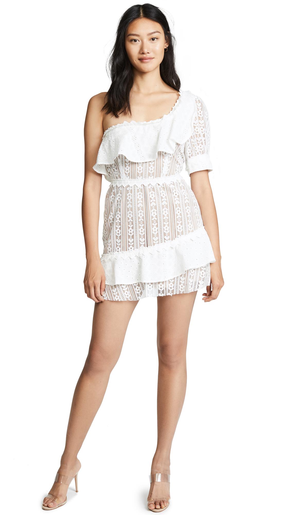 For Love & Lemons Lovebird Lace Mini Dress