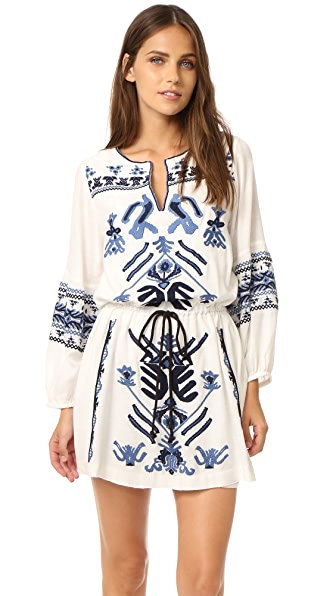 Free People Anouk Embroidered Mini Dress at Shopbop