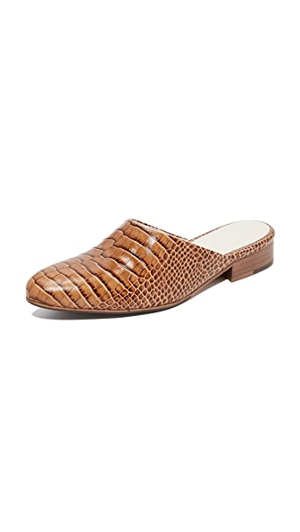 Freda Salvador Lay Croc Mules In Toffee