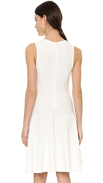 Giambattista Valli Sleeveless Dress