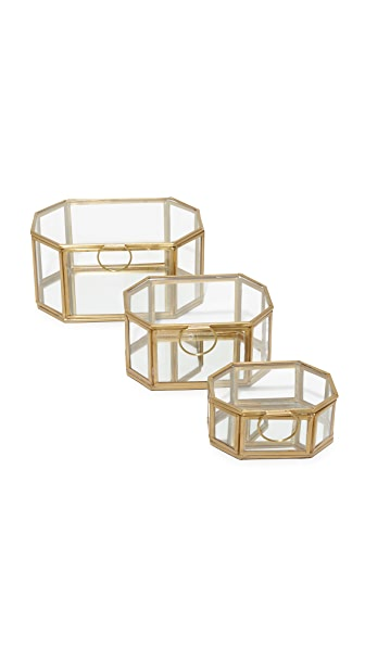 Gift Boutique Wallace Set of 3 Display Boxes In Clear