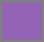 Lilac/Pool