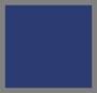 Odyssey Blue