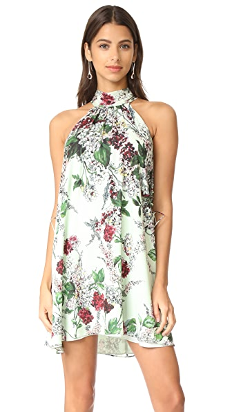 Haute Hippie Morrison Dress In Mint Floral