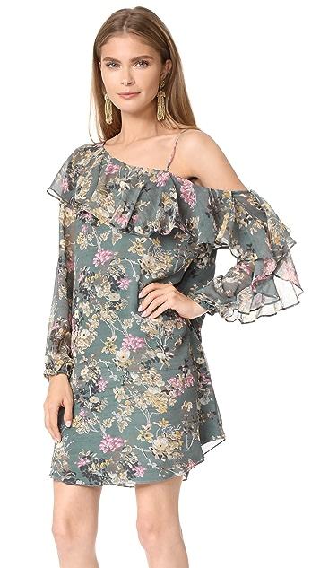 Haute Hippie One Shoulder Your Girl Dress