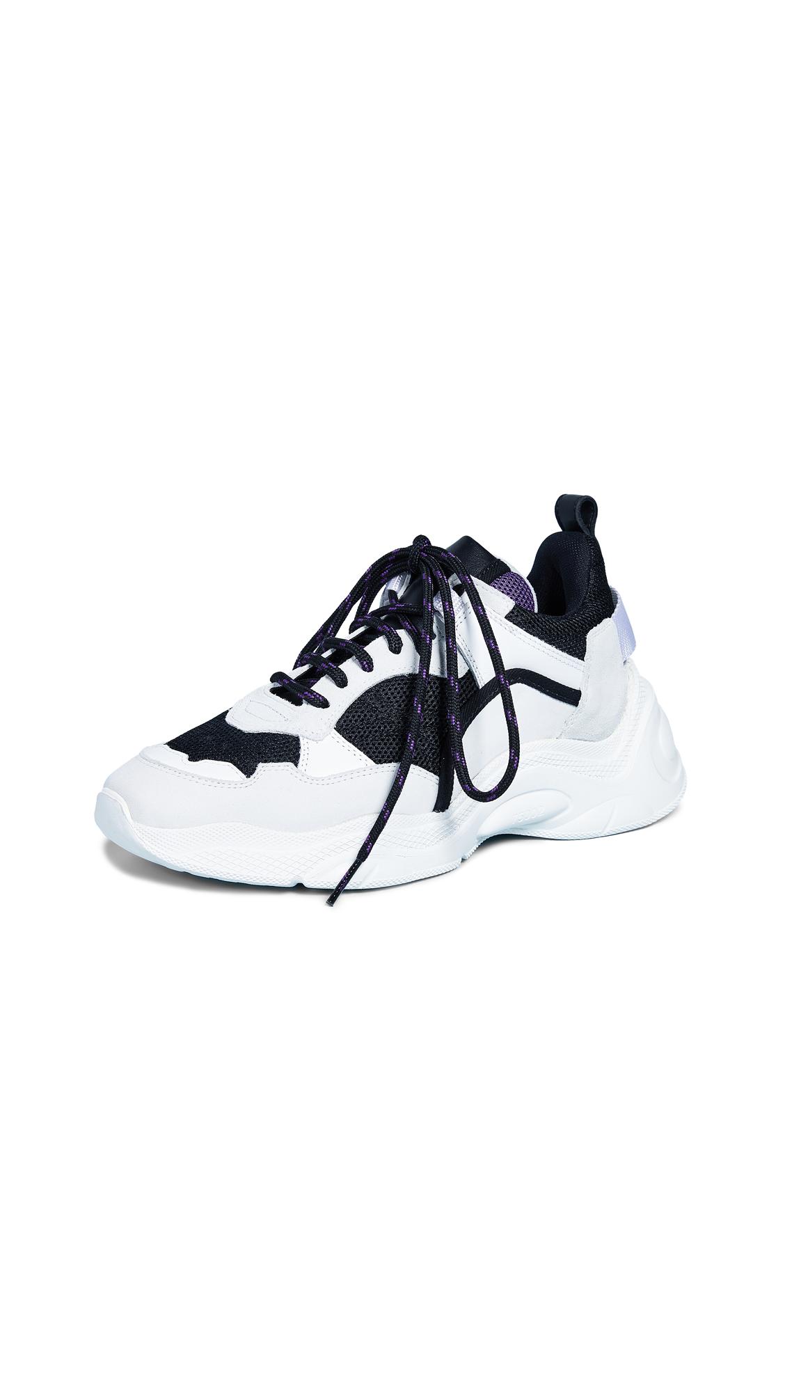 IRO Curverunner Sneakers In White/Purple