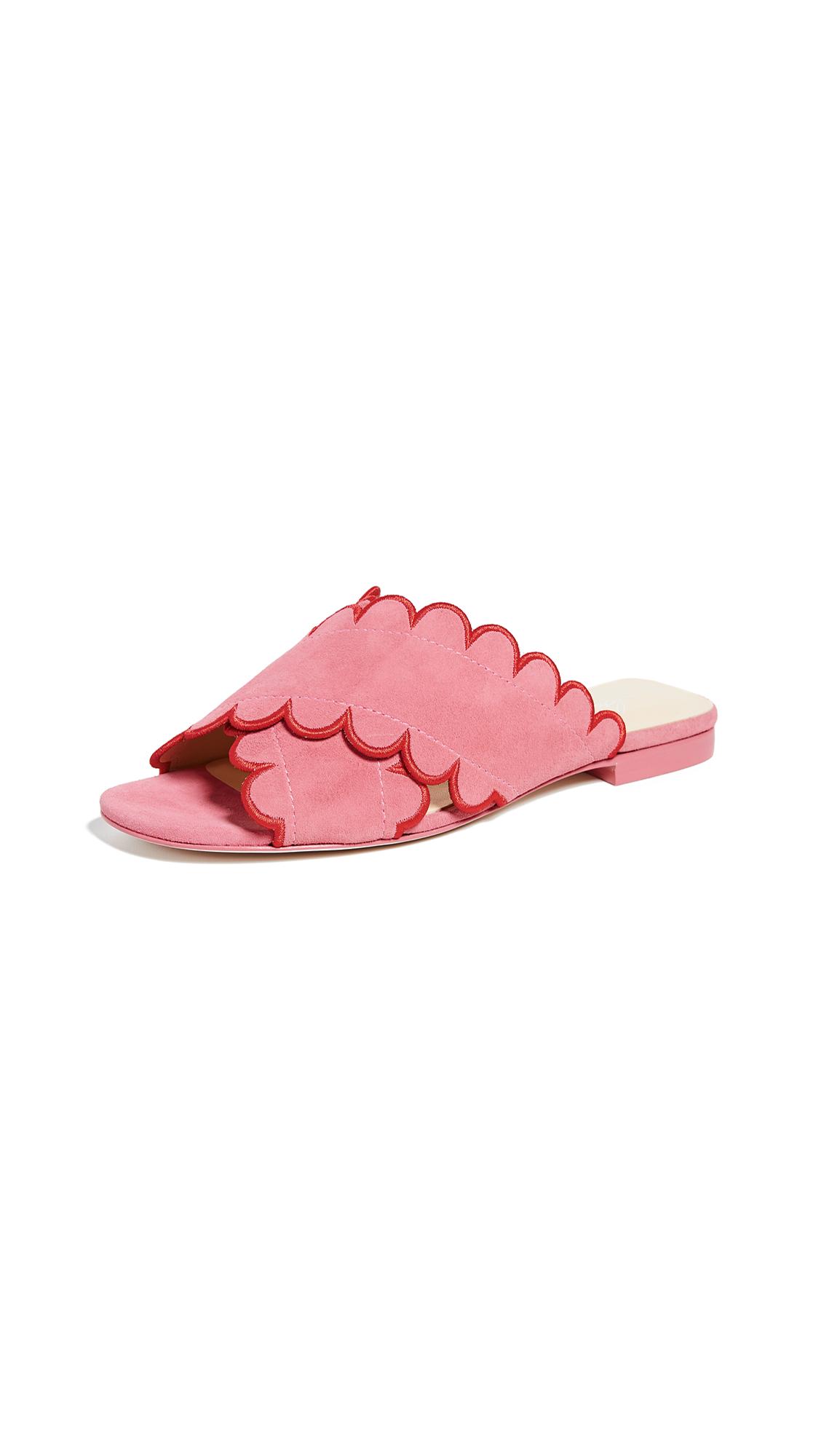 Isa Tapia Nueva Scallop Flat Sandals - Flamingo Pink