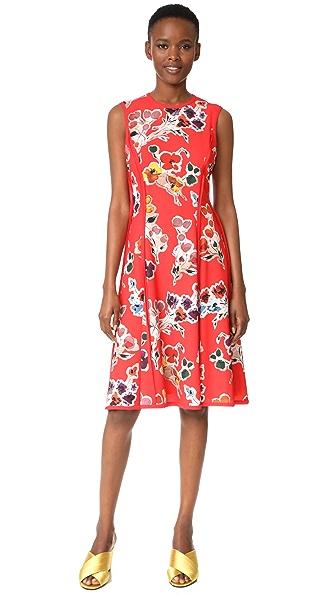 Jason Wu Print Sleeveless Day Dress