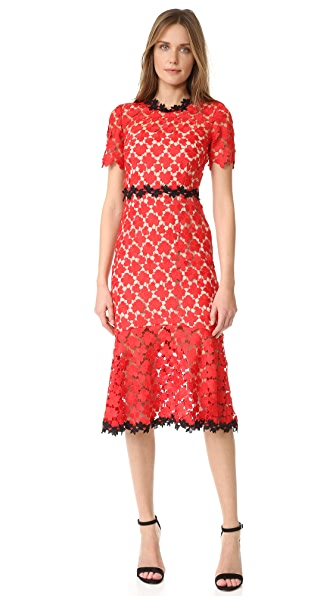 Jill Jill Stuart Floral Lace Dress