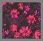 Red/Violet