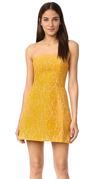 Keepsake Every Way Lace Mini Dress - Mustard