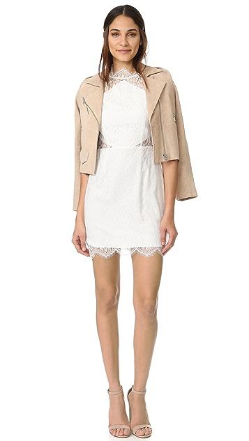 Keepsake Daydream Lace Mini Dress