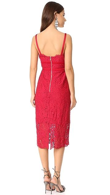 Keepsake Same Love Lace Dress