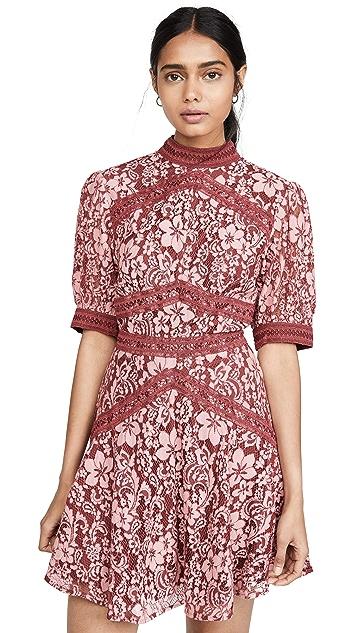 Keepsake Holder Lace Mini Dress